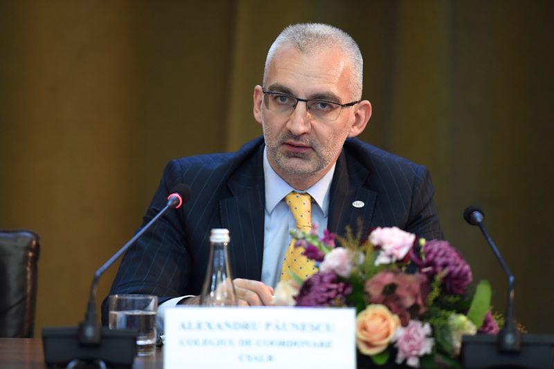 Alexandru Păunescu, Președintele Colegiului de Coordonare al CSALB.